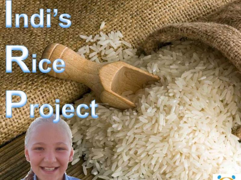 Indi's rice project