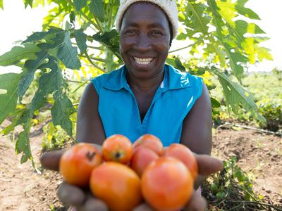 Agriculture & Income for vulnerable farmers