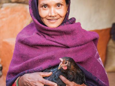 Gift of Love – Pair of Chickens